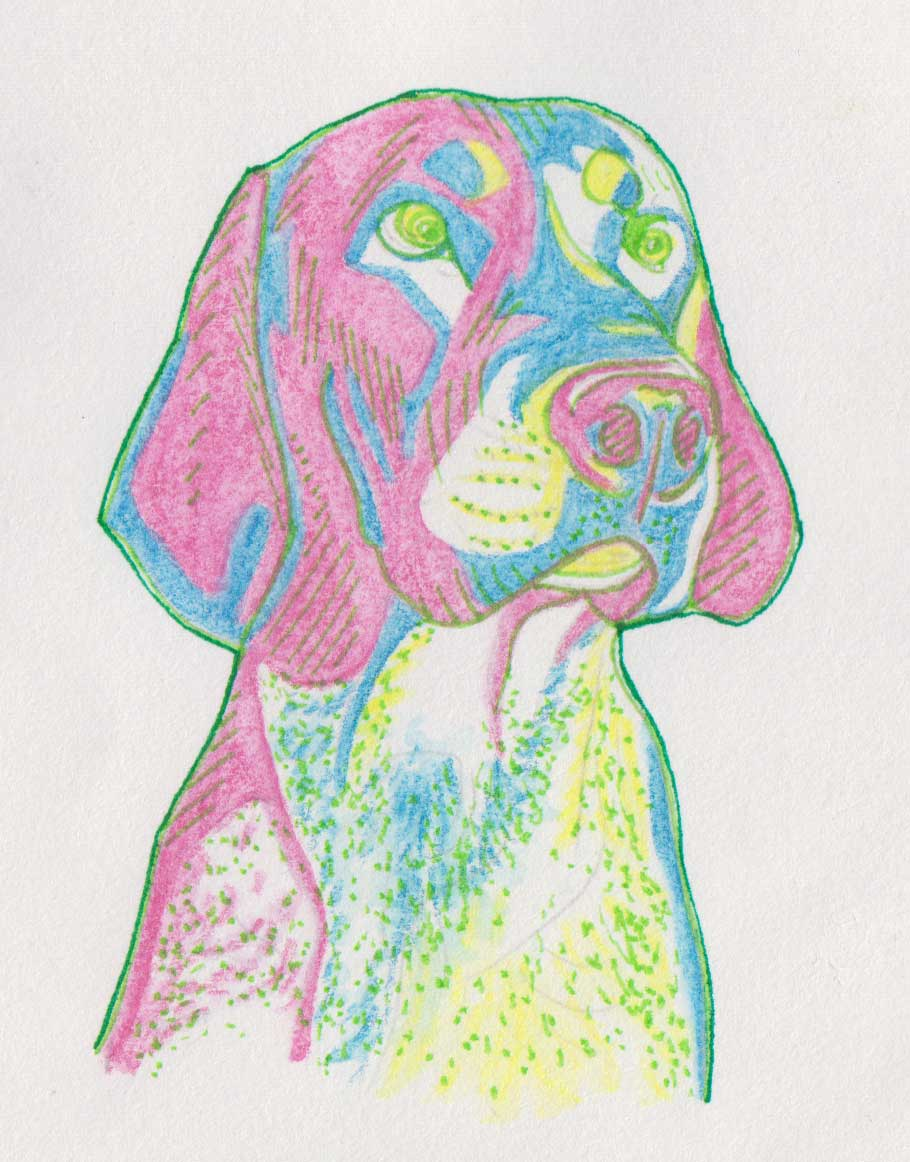 Colorful Dog, painting by Alessandro Bruno.